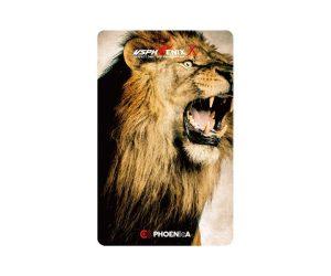 DARTS CARD【PHOENIX】NO.2071