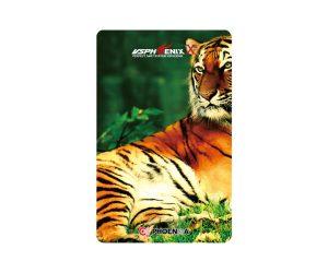 DARTS CARD【PHOENIX】NO.2074