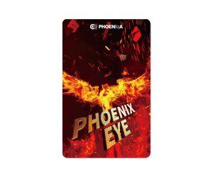 DARTS CARD【PHOENIX】PHOENicA 2019_02 VSX MATCH PHOENIX EYE