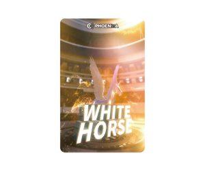 DARTS CARD【PHOENIX】PHOENicA 2019_02 VSX MATCH WHITE HORSE