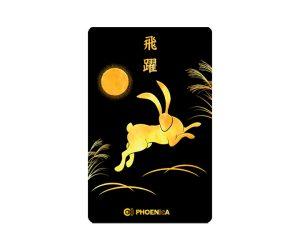 DARTS CARD【PHOENIX】NO.2105