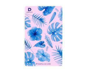 DARTS GAME CARD【DARTSLIVE】NO.1834