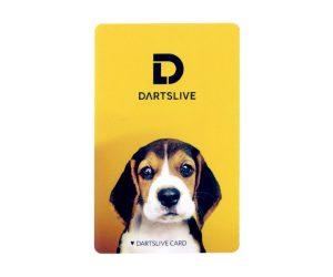 DARTS GAME CARD【DARTSLIVE】NO.1841
