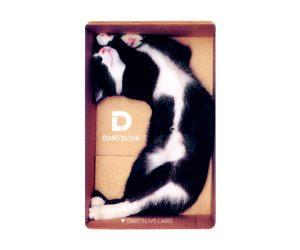 DARTS GAME CARD【DARTSLIVE】NO.1842