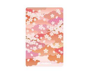 DARTS CARD【PHOENIX】NO.2149